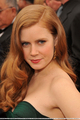 2008 Oscars - amy-adams photo