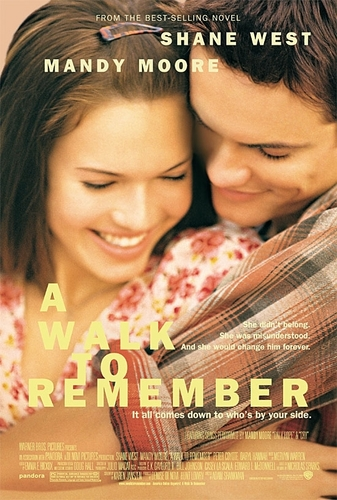 Movie Couples wallpaper entitled A Walk To Remember