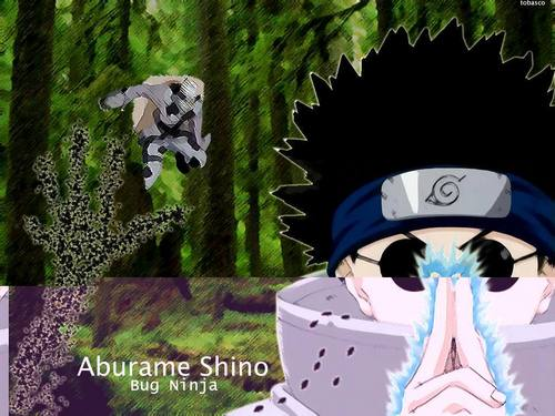 Aburame Shino - Bug Ninja