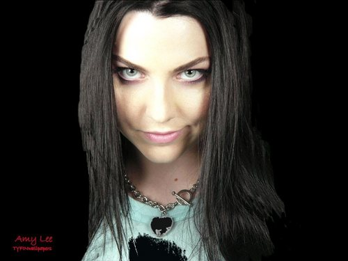 Evanescence wallpaper probably with a portrait entitled Amy Lee
