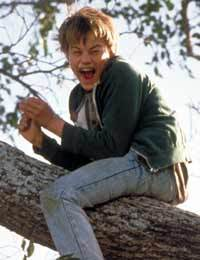 Arnie-s-Hiding-Spot-whats-eating-gilbert-grape-925723_200_260.jpg