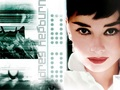 Audrey - audrey-hepburn wallpaper