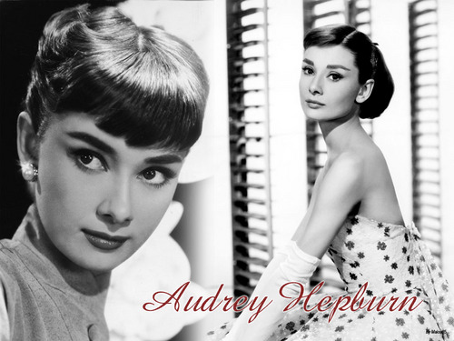 Audrey Hepburn images Audrey HD wallpaper and background photos
