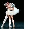 Ballet photo called Ballet