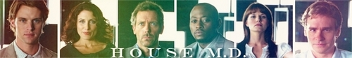 House M.D. photo called Banner