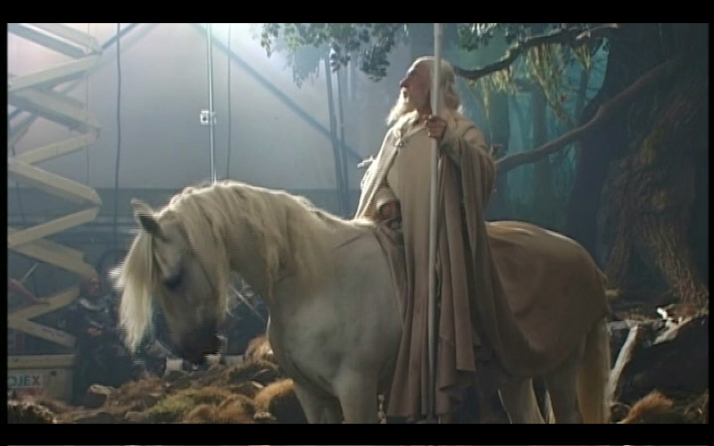 Gandalf Lord Of The Rings Horse