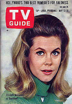Bewitched wallpaper probably containing a portrait and anime entitled Bewitched TV Guide