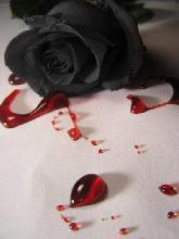 Black Rose emo Blood