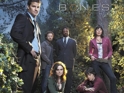 Bones cast s2