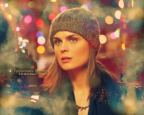 Emily Deschanel wallpaper probably with a portrait entitled Bones