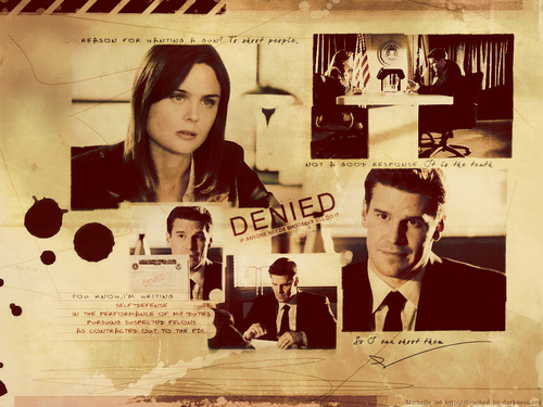 TV-Paare Hintergrund containing a newspaper and Anime entitled Booth & Brennan (Bones)