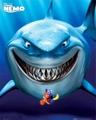 Bruce - Finding Nemo