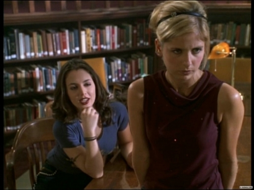 Buffy vs Faith wallpaper probably with a library, an athenaeum, and a bookshop called Buffy & Faith