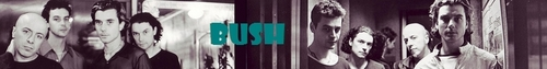 arbusto, bush Banner