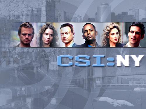 CSI - Scena del crimine NY team