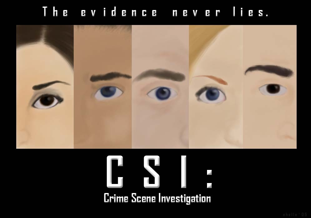 CSI: The Evidence Never Lies - csi fan art