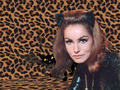 Catwoman - the-60s wallpaper