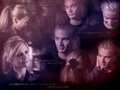 Chosen Buffy & Spike - the-buffyverse wallpaper