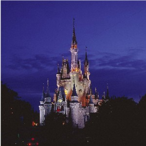 Cinderella قلعہ at night
