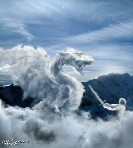 wolk Dragon