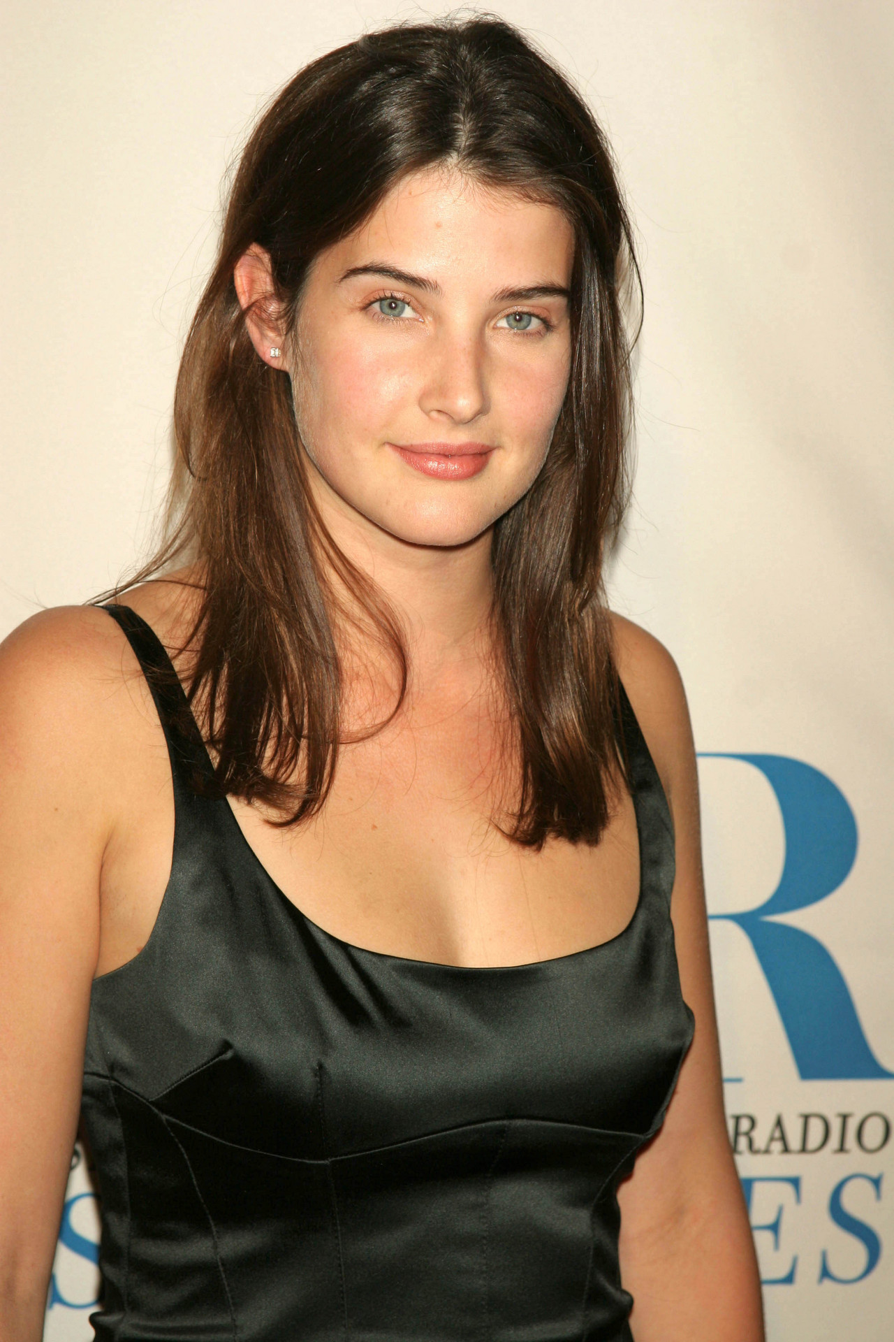 Hot Cobie Smulders nude (45 photo), Pussy, Leaked, Feet, lingerie 2015