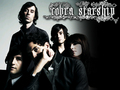 Cobra Starship - cobra-starship wallpaper