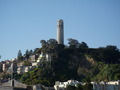 Photos/Pictures of Coit Tower |Coit Tower Flowers