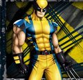 Cool Wolvie - wolverine photo