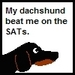 Dachshund SAT - dachshunds icon