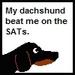 Dachshund SAT