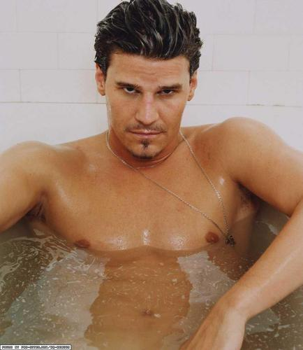 David Boreanaz - hottest-actors Photo