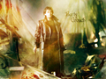 David in Harry Potter - david-tennant wallpaper