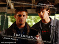 Dean & Sam  - jared-padalecki-and-jensen-ackles wallpaper