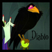 Diablo the corbeau, corneille