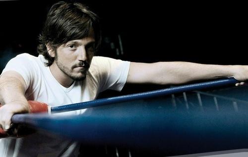 Diego Luna fondo de pantalla