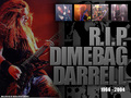 Dimebag - pantera wallpaper