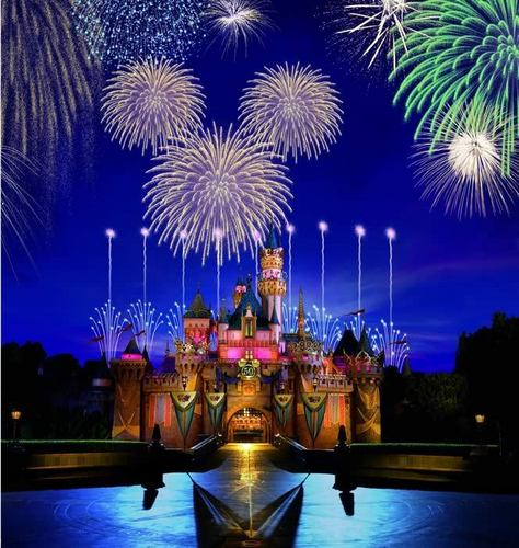 Disney Castle - disneyland Photo