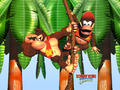 Dokey Kong Country - donkey-kong photo