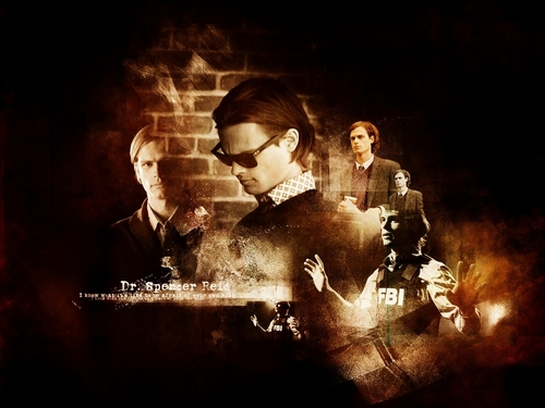 Dr. Spencer Reid wallpaper titled Dr. Reid