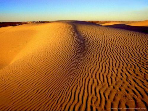 Egypt achtergrond entitled Egyptian Desert