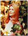 Elizabeth in the '70s