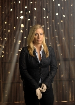 Emily Procter wallpaper with a business suit and a well dressed person titled Emily Procter in CSI Miami