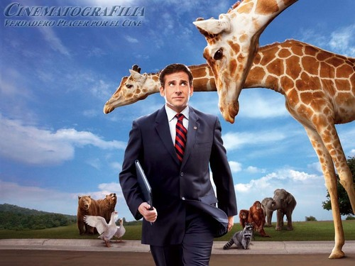 Steve Carell wallpaper titled Evan Almighty