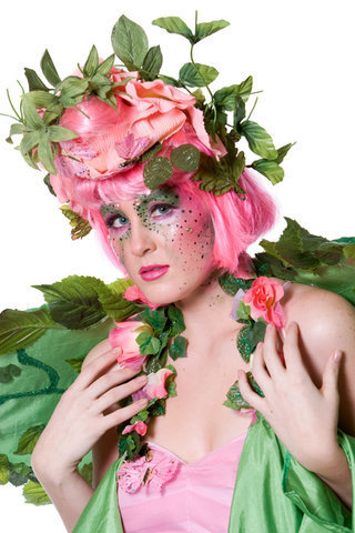 Fairy Costume - fairies Photo