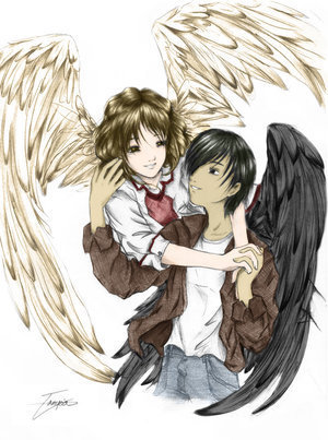 Maximum Ride 바탕화면 probably with 아니메 called Faxness!