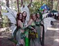 Florida RenFest - renaissance-festivals photo