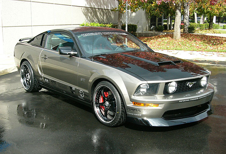 Ford Mustang Gt Muscle Cars Photo 1151435 Fanpop