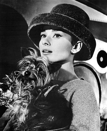 Funny Face - audrey-hepburn Photo