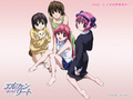 Girls of Elfen Lied