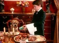 Good Boy! - liam-aiken photo